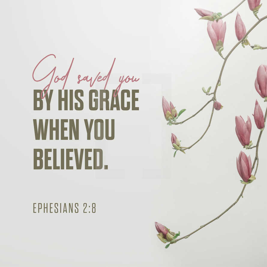 God saved you by his grace when you believed. – Ephesians 2:8