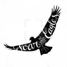 soar on wings like eagles
