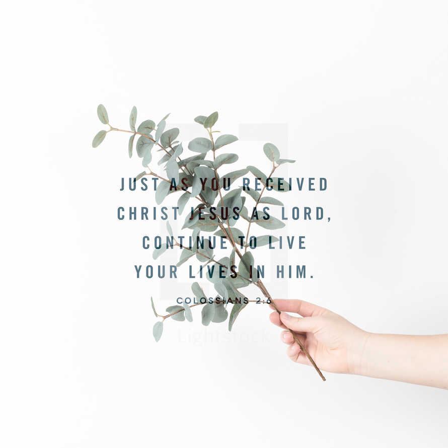 Just as you received Christ Jesus as Lord, continue to live your lives in him. – Colossians 2:6