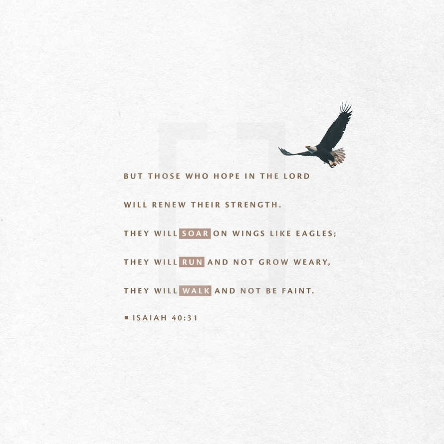 but those who hope in the LORD will renew their strength. They will soar on wings like eagles; they will run and not grow weary, they will walk and not be faint. – Isaiah 40:31