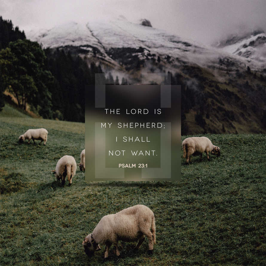 The LORD is my shepherd; I shall not want. – Psalm 23:1