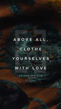 Above all, clothe yourselves with love. – Colossians 3:14