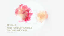 Be kind and tenderhearted to one another. – Ephesians 4:32