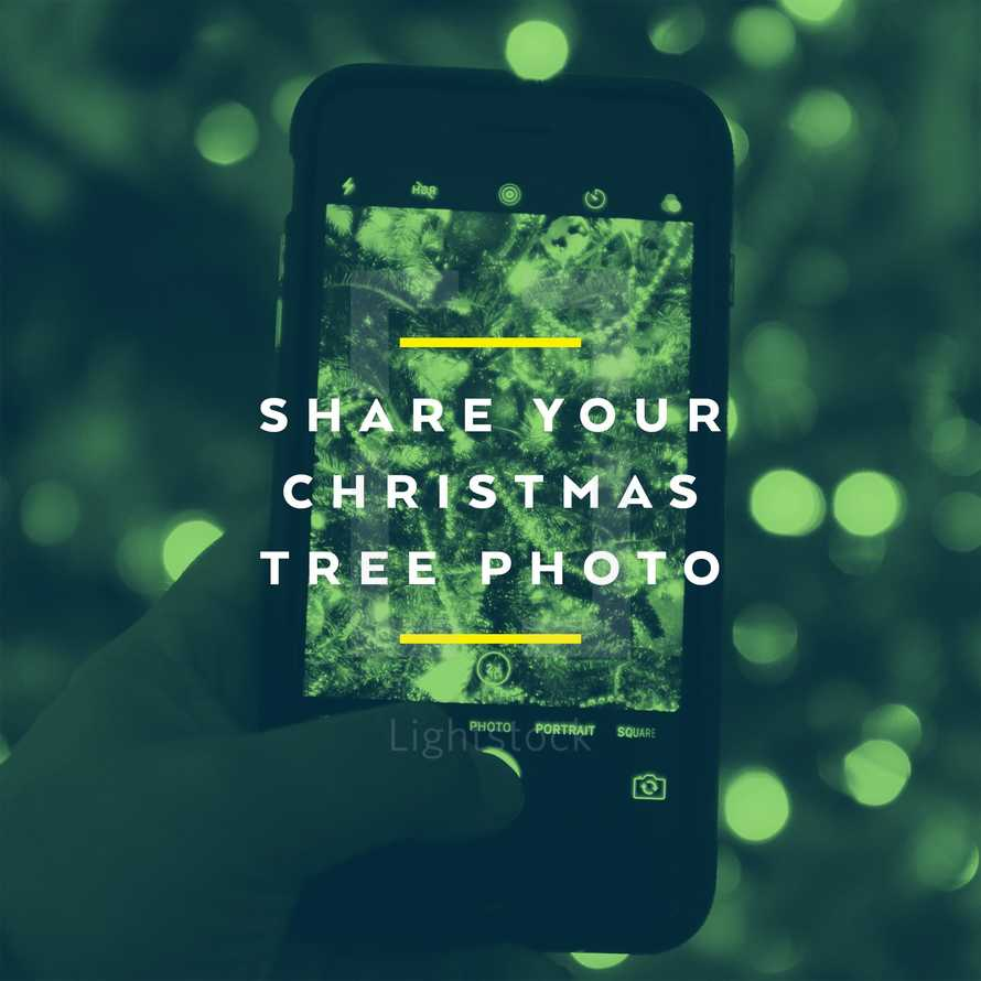 Share your Christmas tree photo.