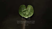 God is love, and all who live in love live in God, and God lives in them. – 1 John 4:16