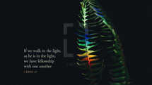 If we walk in the light, as he is in the light, we have fellowship with one another. – 1 John 1:7