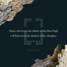 Those who live in the shelter of the Most High will find rest in the shadow of the Almighty. – Psalm 91:1