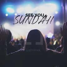 Sunday Social Media