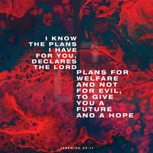 I know the plans I have for you, declares the LORD, plans for welfare and not for evil, to give you a future and a hope. – Jeremiah 29:11