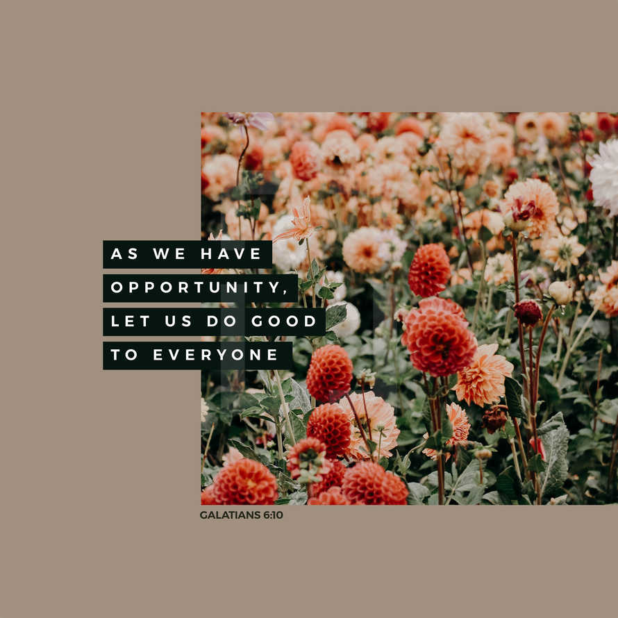 As we have opportunity, let us do good to everyone. – Galatians 6:10