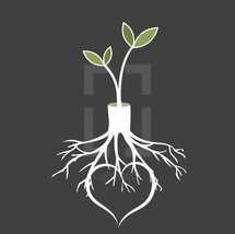 regeneration concept