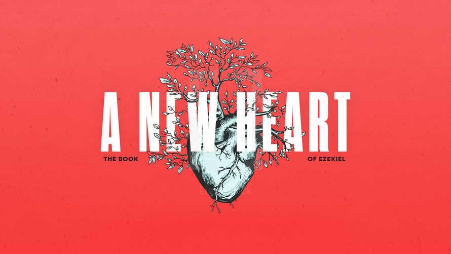 A New Heart: The Book of Ezekiel